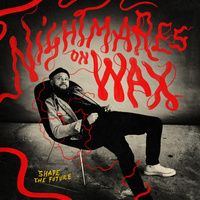 Nightmares On Wax: Shape The Future (2 LP)
