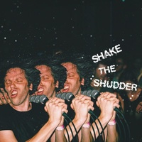!!! (Chk Chk Chk): Shake The Shudder (2LP)